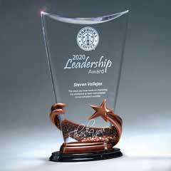 Bronze Star Arch Award