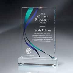 Medium Digi-Color Lucite Award