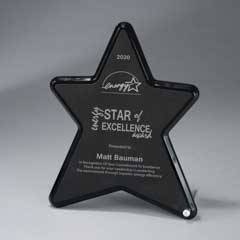 Ebony Lucite Star with Leatherette Inset