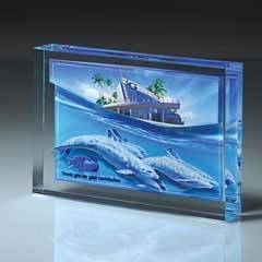 Lucite Infusion Embedded Imprint
